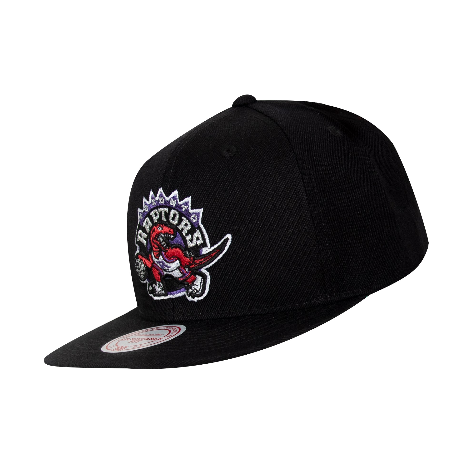 Raptors Mitchell & Ness Men's HWC Solid Snapback