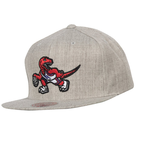 Raptors Mitchell & Ness Men's HWC Team Heather Snapback