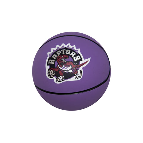 Raptors Spalding Mini HWC Hi Bounce Ball