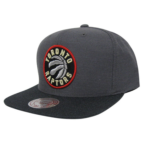 Toronto Raptors Mitchell & Ness Men's Heather Profile High Crown Snapback