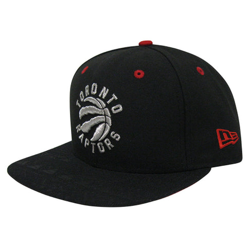 Toronto Raptors New Era Men's Tribal Tone Snapback