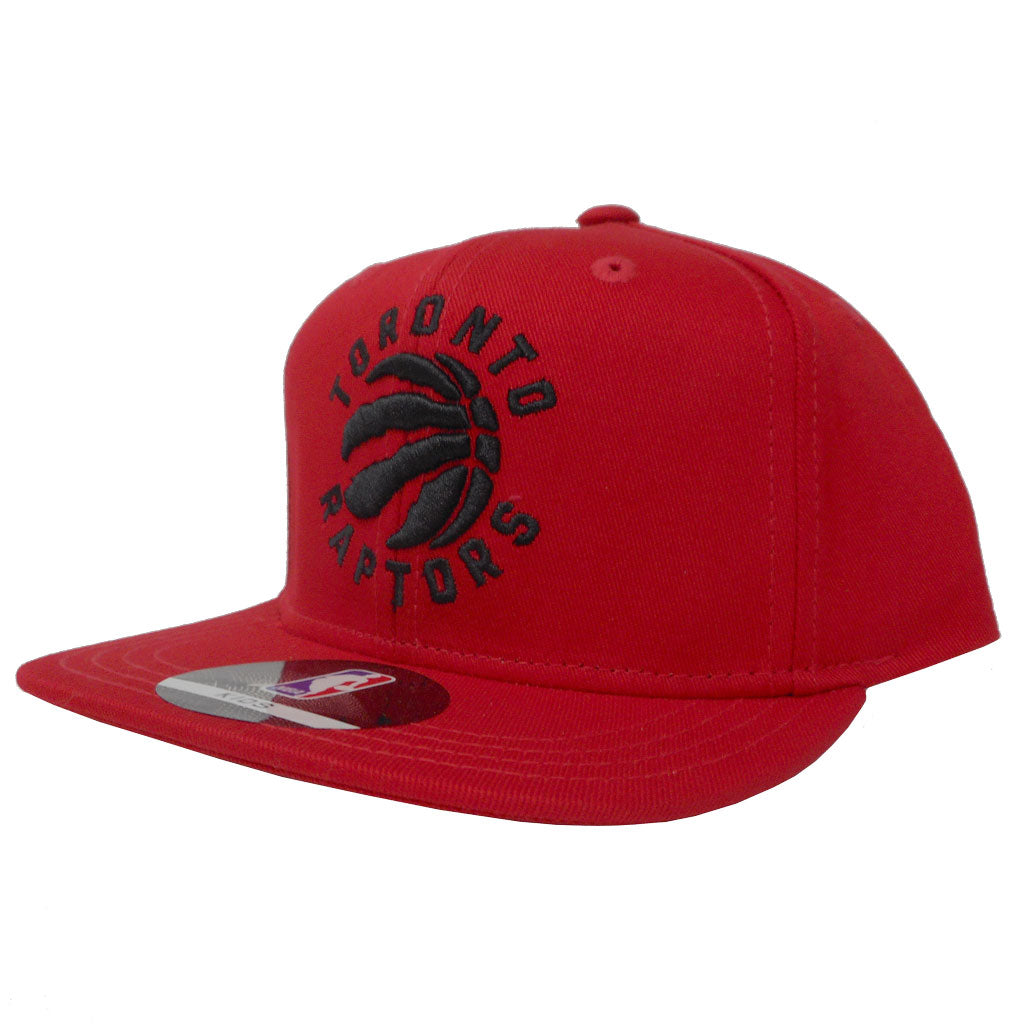 Toronto Raptors Toddler Solid Snapback Hat