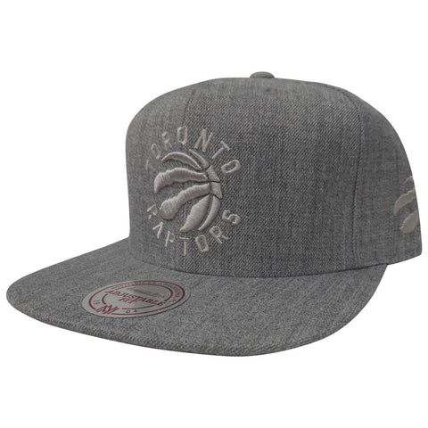 Toronto Raptors Men's Short Hook Snapback Hat