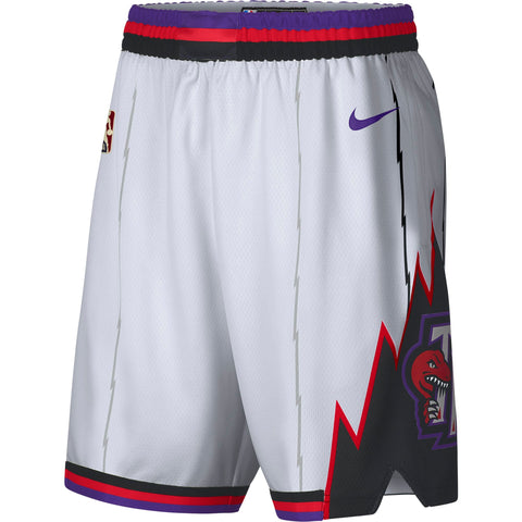 Raptors Nike Men's Swingman HWC Shorts