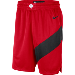 Raptors Nike Men's Swingman 2020 Icon Shorts
