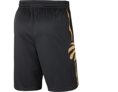 Raptors Nike Men's Swingman 2019 City Shorts