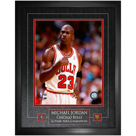 Bulls Michael Jordan Unsigned 16x20 Photo Framed