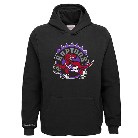 Raptors Mitchell & Ness Youth HWC Logo Hoody