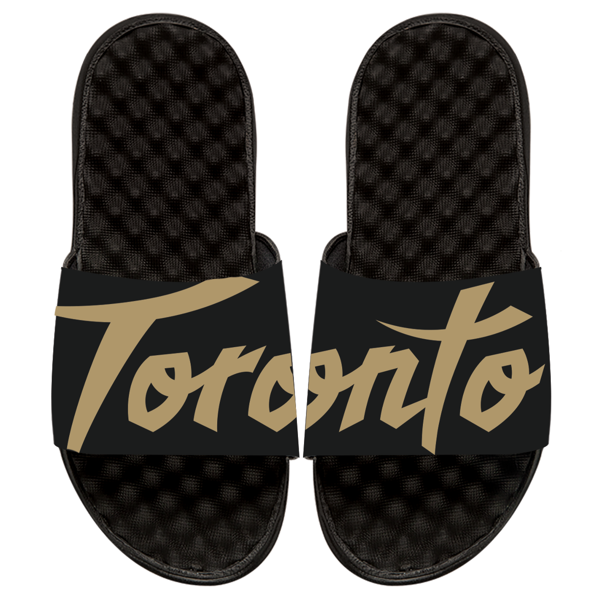 Raptors iSlide Sandal - 2019 City Edition