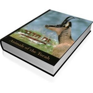 Animals Of The Torah