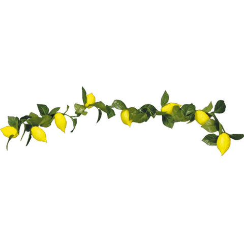 Etrog Garland (Various Sizes)