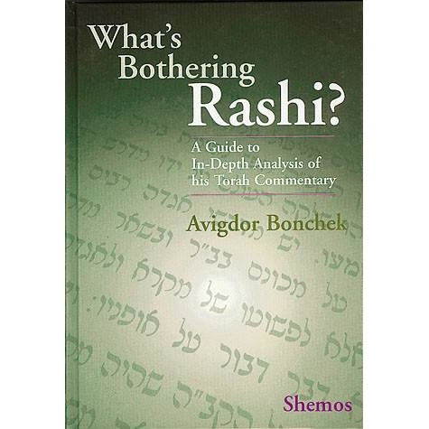 What's Bothering Rashi? (Various Seferim)