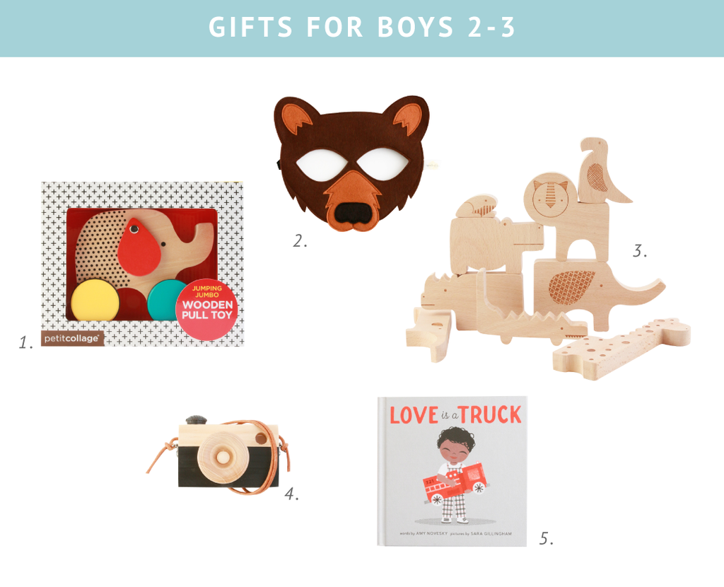 Birthday gifts for boys 2-3