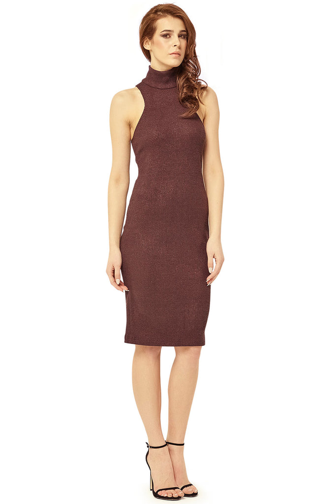 Evelyn Turtleneck Dress