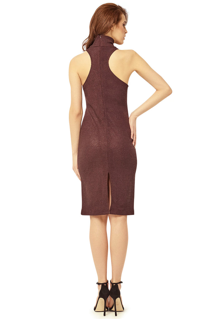 Evelyn Turtleneck Dress - LAST ONE