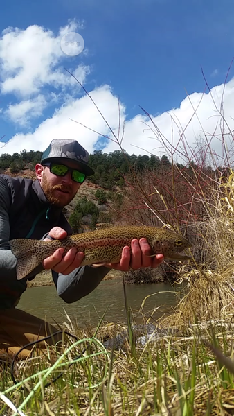 Spring Fishing Update for Telluride