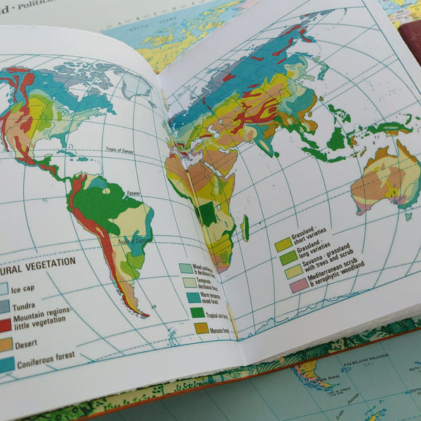 world Atlas Natural Vegetation information double page spread stitched into leather travel notebook