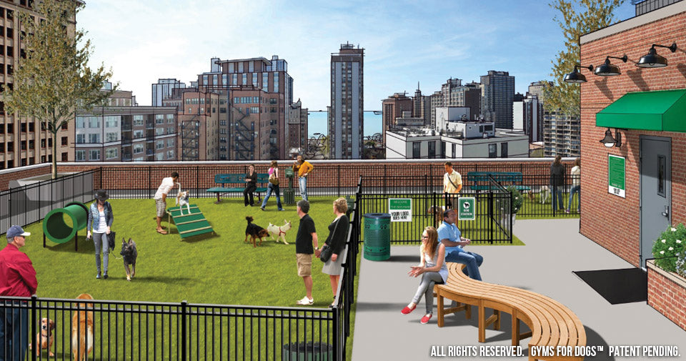 Amenities That Definitely Attract Dog Owning Residents