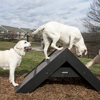 Gyms For Dogs™ Park Play Products