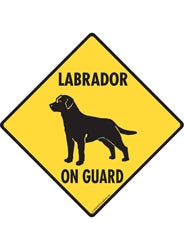 Labrador Retriever On Guard