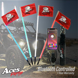 (Bluetooth) Deluxe Lighted Whips