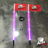 400 Combination Deluxe Lighted Whips