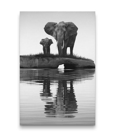 Black and White Elephant Wall Art