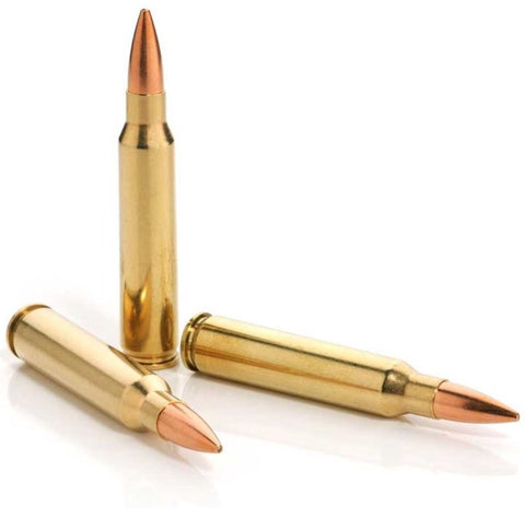 Same or Next Day Shipping! 5.56x45mm Lake City Brass 55 GR M193 FMJ BT REMAN - 250 Count