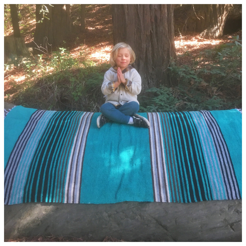 Teal Stripe Mexicana Blanket