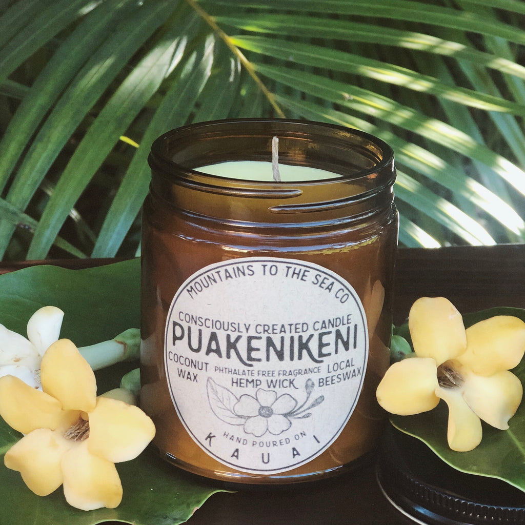 CoconutWax+BeesWax Candle : PUAKENIKENI