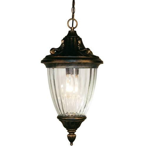Z-Lite Waterloo Collection Black Gold Finish Outdoor Chain Light - ZLiteStore