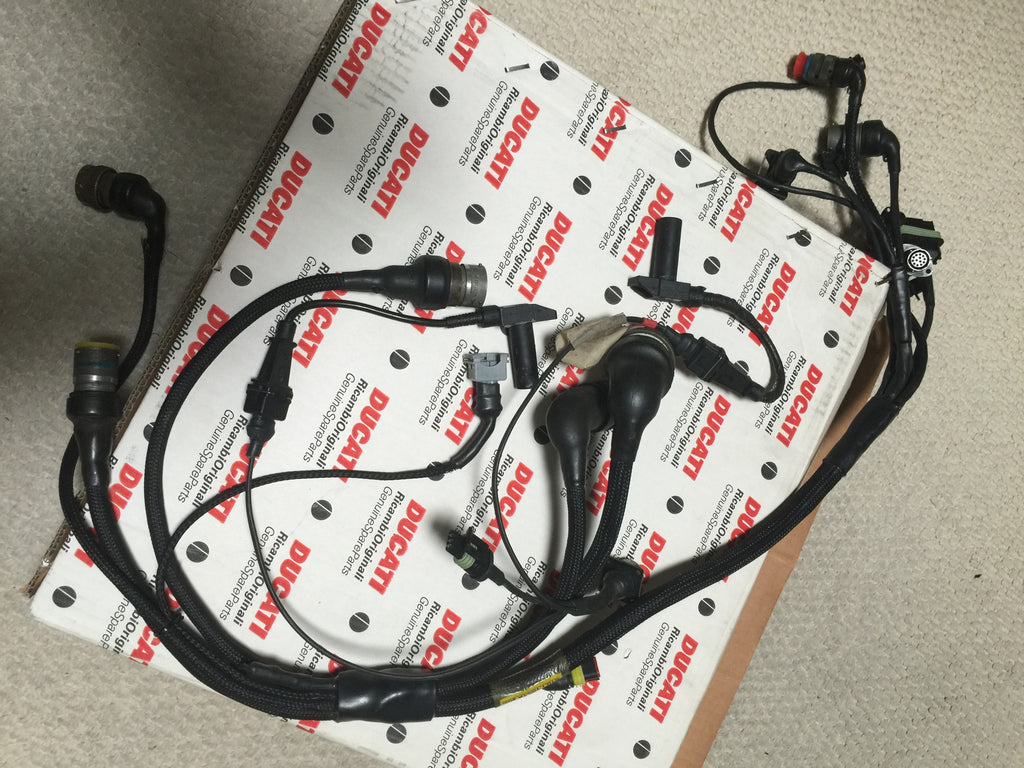 ducati 996 rs nos wiring loom harness for later 996 rs. Black Bedroom Furniture Sets. Home Design Ideas