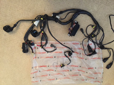 Ducati 998 Main Wiring Loom/Harness