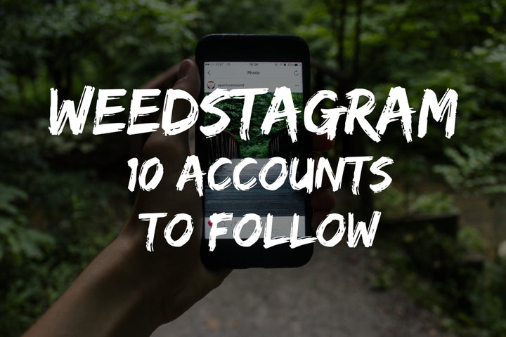 Weedstagram: 10 Accounts To Follow