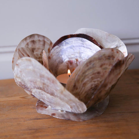 Placuna Candle Holder