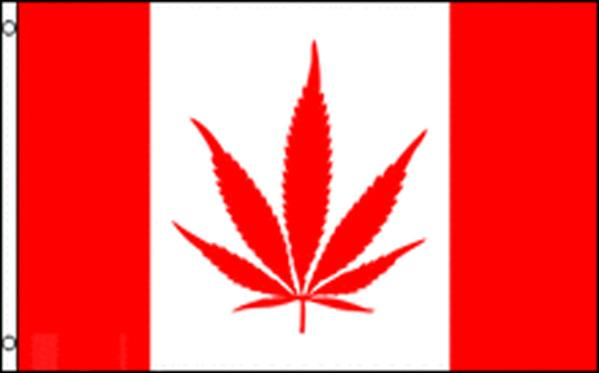 "Marijuana Maple Leaf  36""x 60"""