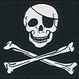 Pirate Skull With a Patch
