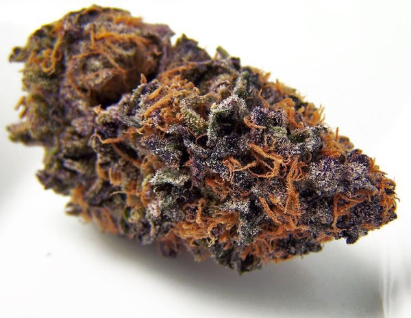 Forbidden Fruit - Gateway Wellness