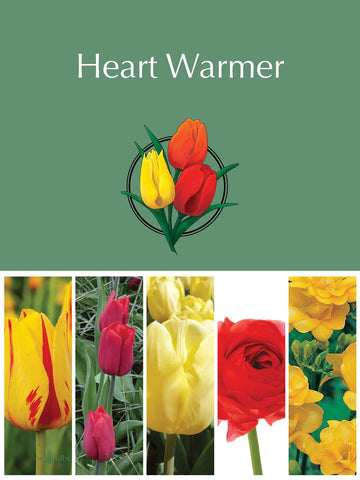 Mother's Day - Heart Warmer Gift Pack