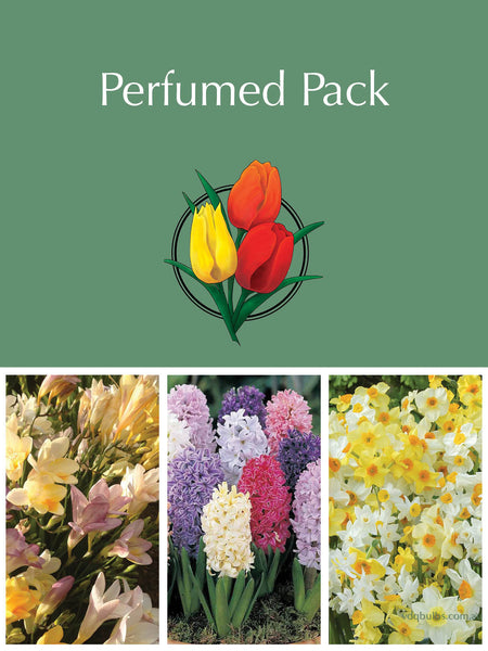 Mother's Day - Perfumed Gift Pack