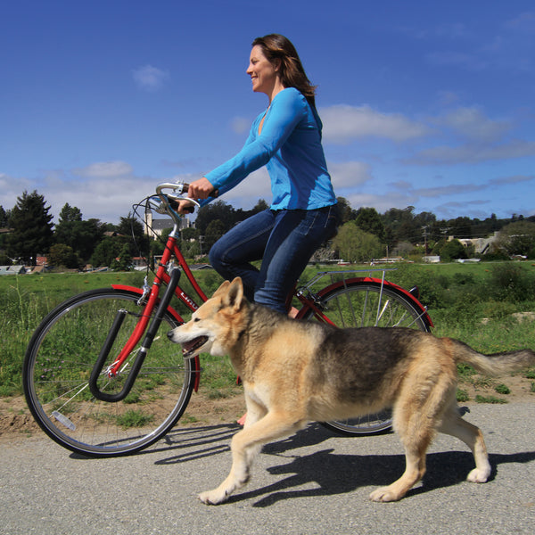 Dog Runner for bikes by Moved By Bikes.