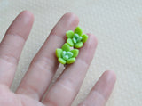 Mini Ombre Succulent Post Earrings