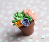 Mini Potted Succulent Arrangement Polymer Clay Plant Magnet