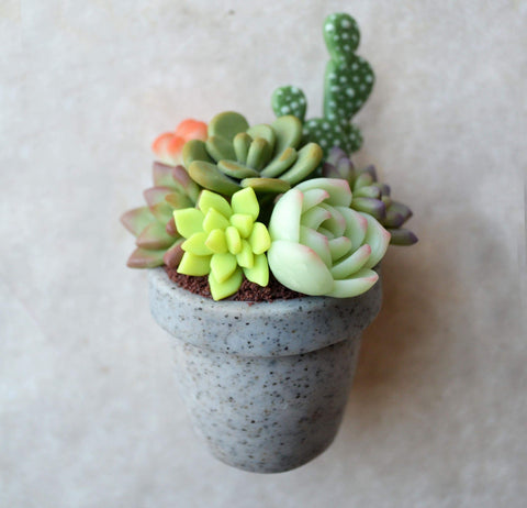 Granite Pot Mini Succulent Arrangement Magnet