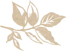 Kaisercraft - Wood Flourish - Leaf
