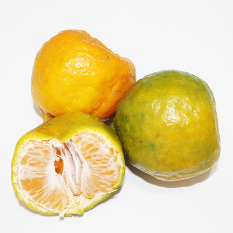 Nagpur Orange* Rs. 80/kg