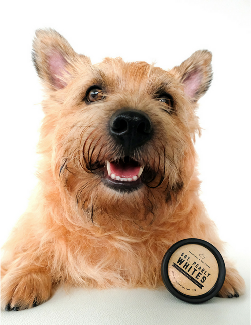 Sgt. Pearly Whites All-Natural Pet Toothpaste