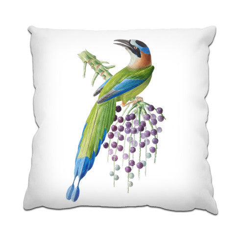 Cushion - FF - Brazil Bird 6 (Motmot)