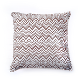 Registaan - रेगिस्तान Set of 2 Cushion Covers