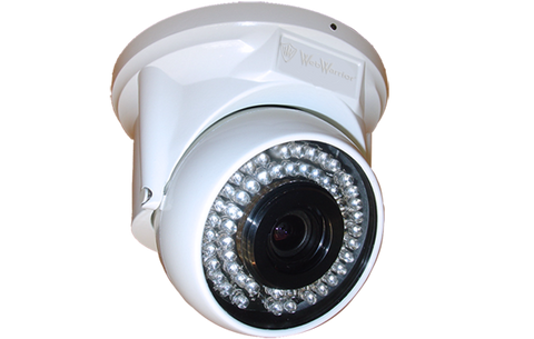 2.4MP 1080P Freezer Camera for Tough Low Temp Environments